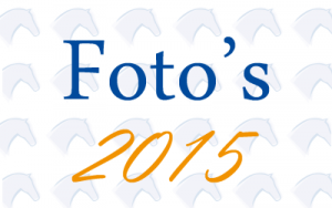 fotos-2015